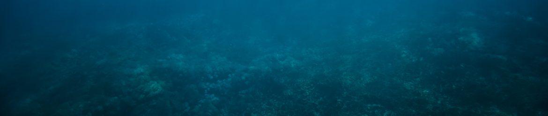 Unterwasserfreunde Ulm e.V.